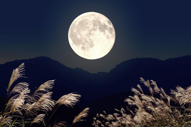 「月が綺麗ですね」の上手な返し方【OKの場合】