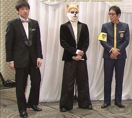 中島健人というアイドルはシークレットブーツですか?